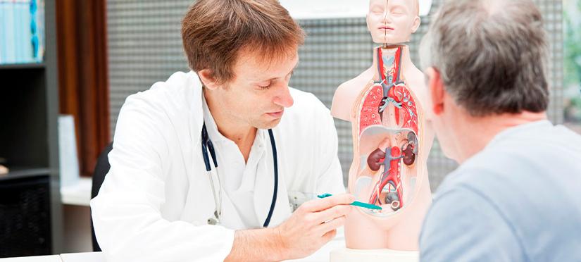 Гинеколог и уролог в чем разница